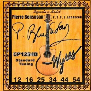 pierre bensusan standard signature acoustic guitar strings